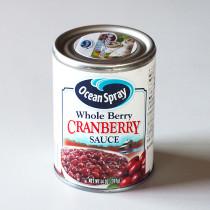 クランベリーソース (つるこけももの缶詰)397g
