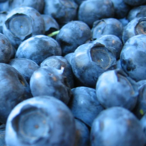 Frozen Organic Blueberries (1kg)